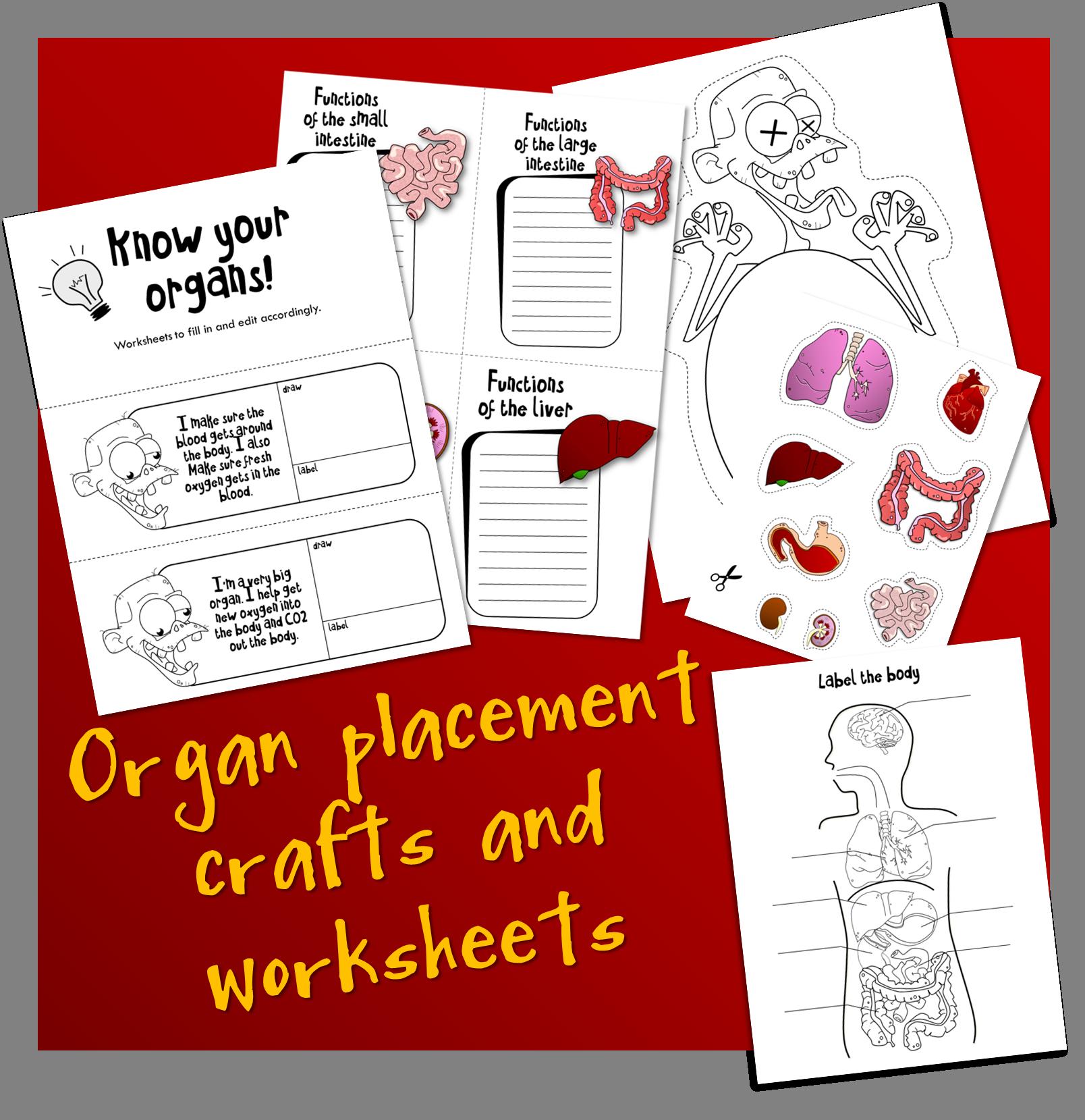 Organ Placement Pack Bonkerbots