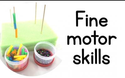 Fine Motor skills: Part 2