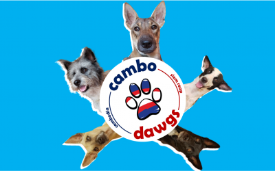Cambo dogs